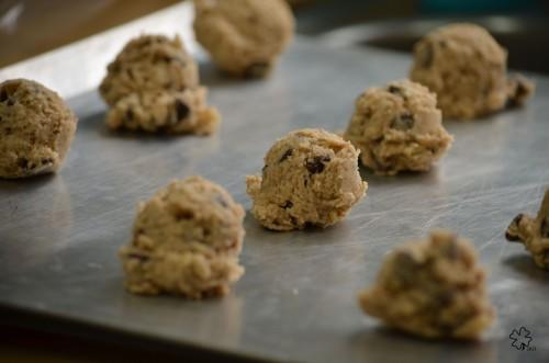 DSC_4825 029 1-26-13 cookies