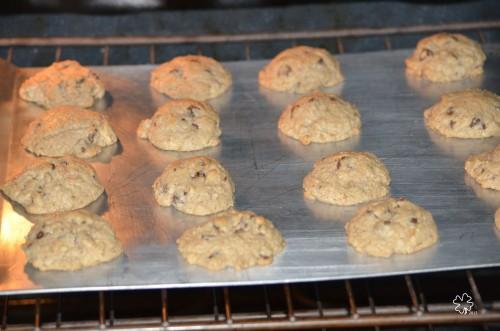 DSC_4837 029 1-26-13 baking