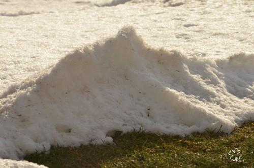 DSC_5867 038 2-14-13 shrinking snowbank