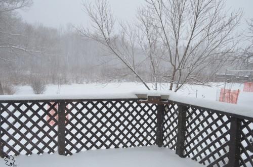 DSC_9213 051 3-19-13 deck-yard-snow