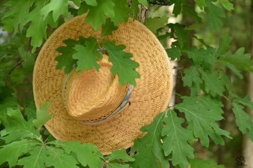 DSC_5702 084 6-5-13 sketchclass 3 hat