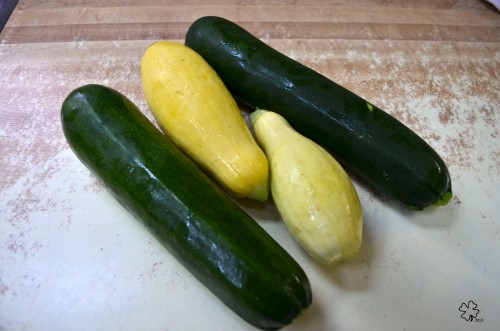 First summer squash and zucchini from the garden.