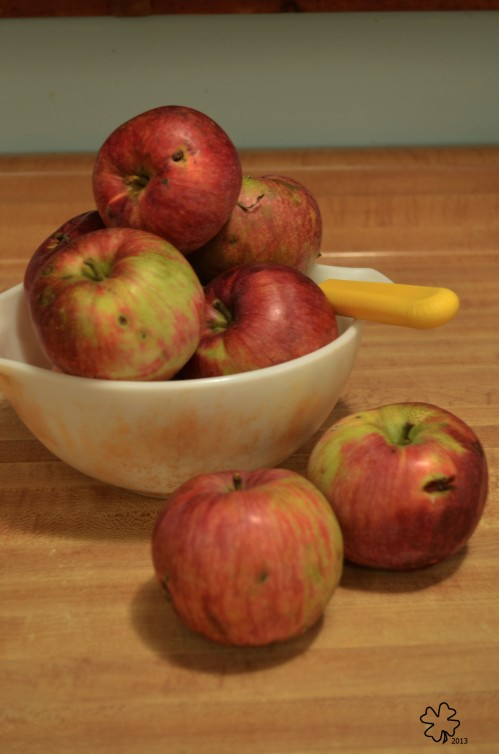 A bowl of apples, ready for the knife
