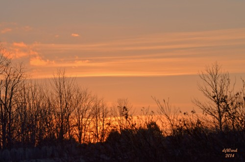 Sunset, 3-24-14