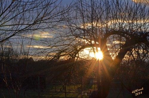 Sun Peeks Through  Dark Sky, 7:30 PM