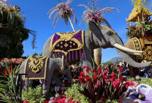 Rose Parade - Elephants