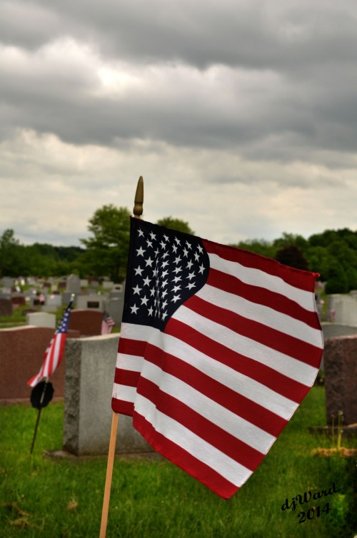 DSC_0368 053 5-29-14 st pat cemetery