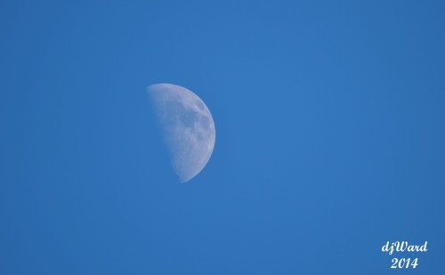 Moon, Early Evening