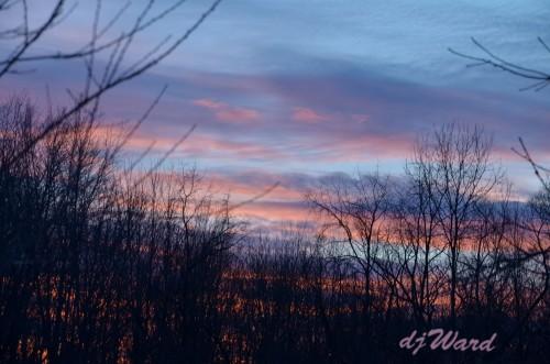 DSC_5267_128 1-17-14 sunset
