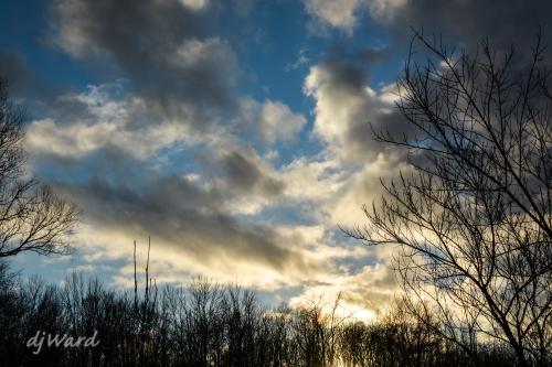 DSC_4173_232 1-27-16 sun set west
